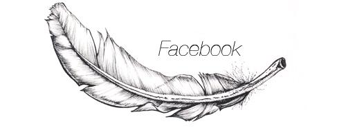 featherfacebookhelvetica